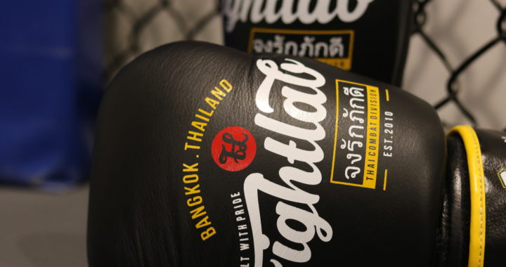 Fightlab 16 Oz Muay Thai Glove Review Fight Chase